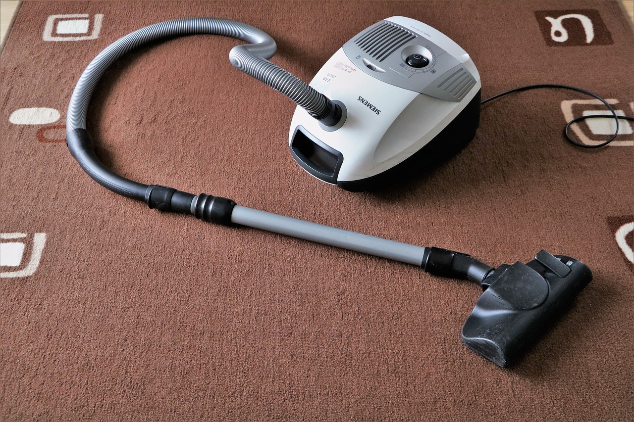 Four Reasons to use a Professional Carpet Cleaner